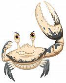 Illustration of a closeup crab