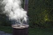 stock photo of cauldron  - Steamy Rusty Cauldron in front of Green Bush - JPG