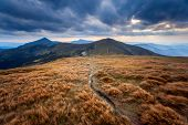 summer landscape. mountain path on the blue sky background. Panorama