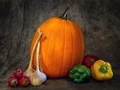 Composition of big pumpkin, red chili pepper,garlic and paprika shot on dark grey background