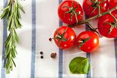 Cherry Tomato and Rosemary with Basil