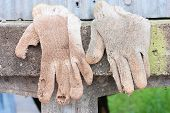 A Pair Of Work Gloves