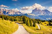 Great view on the Sassolungo (Langkofel) and Sella group, valley Gardena. National Park Dolomites, S