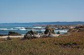 The coast of Fort Bragg, California
