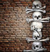 Human skulls and bones on brick wall