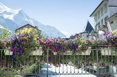 CHAMONIX, FRANCE - SEPTEMBER 02: Close up shot of flowers on bridge over Arve river. The city is one