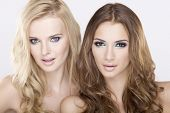 Cosmetics portrait of two smiling young adult attractive and sensuality girl friends - blonde and br