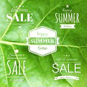 Summer Labels Set, Vector Illustration