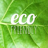 Green Leaf Texture, Vector Illustration
