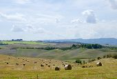Typical Italy Tuscan landscape