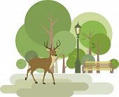 Park with deer