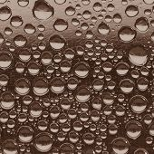 Water Drops Sepia