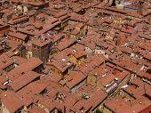 Orange rooftops