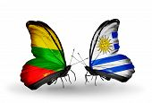 Two Butterflies With Flags On Wings As Symbol Of Relations Lithuania And Uruguay