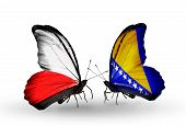 Two Butterflies With Flags On Wings As Symbol Of Relations Poland And Bosnia And Herzegovina