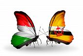 Two Butterflies With Flags On Wings As Symbol Of Relations Hungary And Brunei