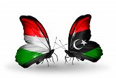 foto of libya  - Two butterflies with flags on wings as symbol of relations Hungary and Libya - JPG