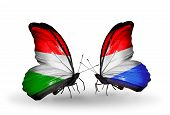 Two Butterflies With Flags On Wings As Symbol Of Relations Hungary And Luxembourg