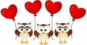 Love owls with heart balloons