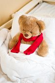 Brown Teddy Bear In Red Scarf Lying In Bed Under Blanket