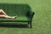 picture of greenery  - eco style of interior decoration the grass sofa with green grass floor - JPG