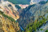 Canyon Of The Yellowstone In Wyoming During Summer