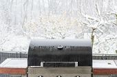 Bbq In The Snow