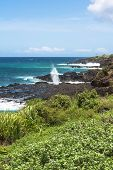 Koloa coast, Kauai