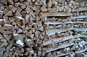 Chimney Wood