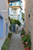 Small Village Alley