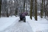The Woman Walking With Buggy