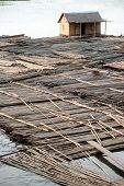 Bamboo Raft.