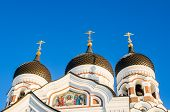 Domes Of Alexander Nevsky Cathedral In Tallinn.