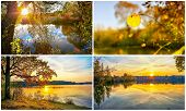 Collage Of Autumn Scenery