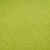 Green Felt cloth fragment