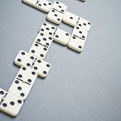 Domino bones composition