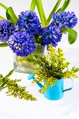 Hyacinths And Small Yellow Flowers