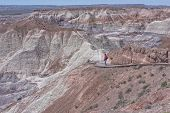 picture of petrified  - Woman Hiking Blue Mesa At The Petrified Forest National Park - JPG