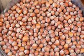 image of hazelnut  - Bunch of Hazelnuts in Shells at Market - JPG