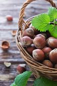 stock photo of cobnuts  - hazelnuts in a basket on an old wooden background - JPG
