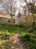 picture of church-of-england  - Ancient norman parish church in woodland in Minster Boscastle Cornwall England UK - JPG
