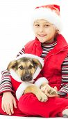 picture of christmas puppy  - kid and puppy in Christmas clothes on a white background