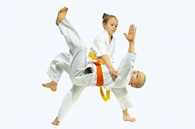 image of judo  - High throw judo in perfoming young athletes - JPG