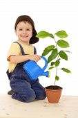 Smiling little boy watering the plant
