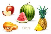 Pineapple Apple Watermelon Papaya Realistic Fruit Slice Set. Vector Illustration. 3d Tropical Exotic poster