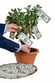 Earning Profit