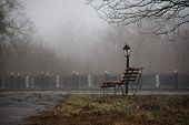 Empty Bench At Park Near Pond By Foggy Day, Minimalistic Cold Season Scene. Bench At The Lake In The poster