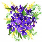 Bunch of blue irises