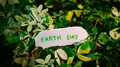 Earth Day Concept, Earth Day Word Written On A Paper With Nature Green Plant Background poster