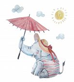 Cute Baby Elephant In Swimsuite, Large Brimmed Sun Hat Under Umbrella Isolated On Background. Cartoo poster